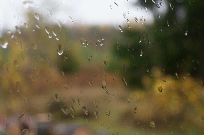 Fönster med regndroppar.
